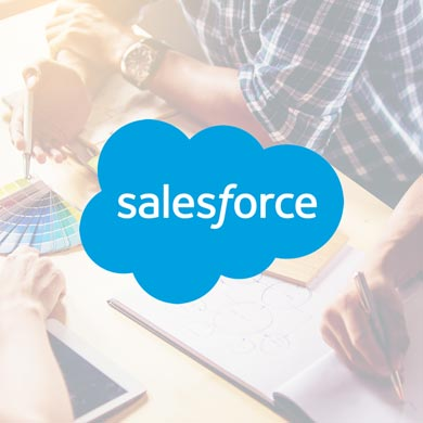 Michigan Salesforce CRM Developers